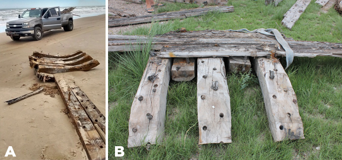 Figure 3. Framing Section, Artifact No. 33: (a) interior view on beach; (b) detail of exterior in storage on Keith Reynolds property. (Photo 3(a) by Keith Reynolds).