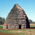 The grass house that previously stood at Caddo Mounds.