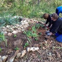 Volunteers work in the garden.